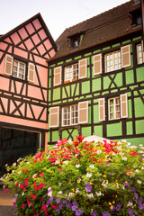 houses in pink and green