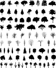 vector_trees