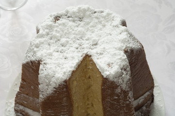 Close-up view of Italian Pandoro