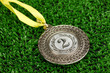 Silver medal on grass background