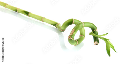 Papiers peints Bambou Beautiful green bamboo isolated on white