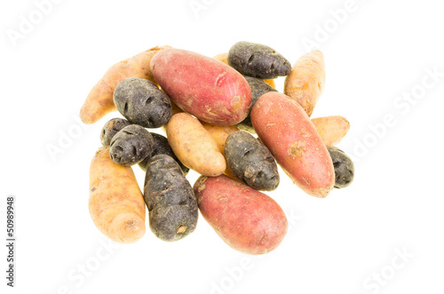 Colorful potatoes isolated on white
