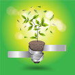 Creative light bulb tree growth concept