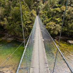 Swing bridge over green jungle river New Zealand