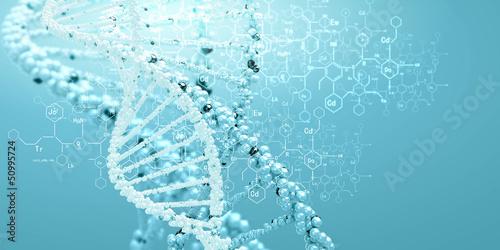 DNA molecule - 50995724
