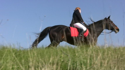 Horse with horsewoman hoof beats