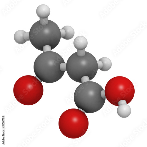 Ketone body (acetoacetic acid), molecular model