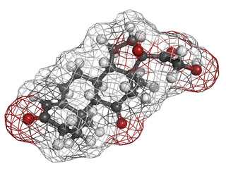 cortisone stress hormone, molecular model
