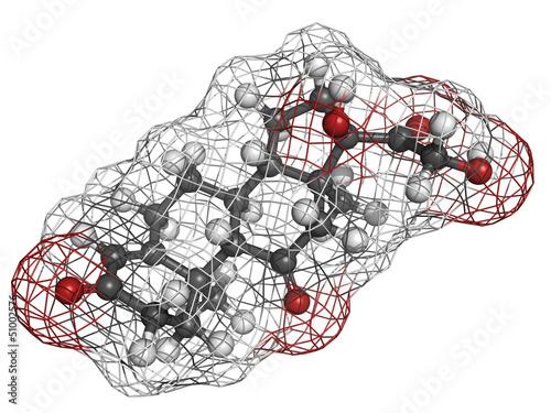 cortisone stress hormone, molecular model