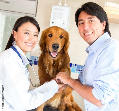 Teamwork at the vet