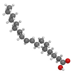 Elaidic acid trans fatty acid, molecular model