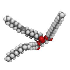 Trans-fat containing triglyceride (elaidyl stearyl oleyl triglyc
