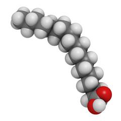 Stearic acid saturated fatty acid, molecular model
