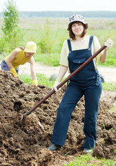 Women scatters the manure