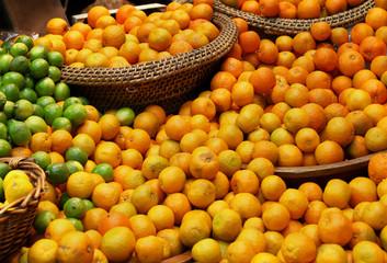 Citrus variety