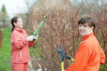 women trimming bough
