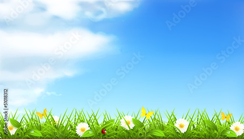 Spring background - 51018312