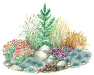 Watercolors hand painted picture of garden design of rockery