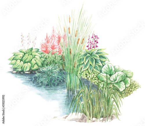 garden design nearly a water body