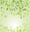 Spring green floral card