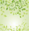 Spring green floral card