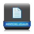 Bouton Web MENTIONS LEGALES (loi juridique conditions générales)