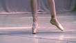 Ballerina shows classic ballet pas. Slow Motion 240 fps.