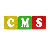 cms - isolated text in wooden building blocks