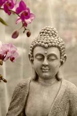 Buddha u Orchideen