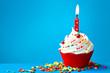 Birthday cupcake - 51049799