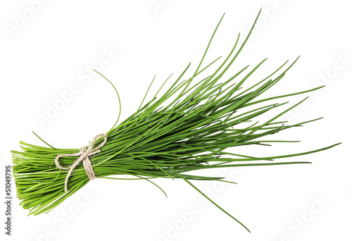a bunch of fresh chives