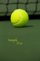 Tennis Ball Isolated on the Court