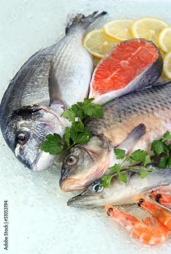 Fresh seafood on ice - 51053194