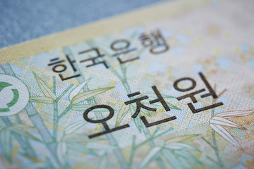 Korean Won Currency
