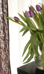 Purple tulips in interior design