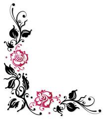 Ranke, Rosen, Rosenranke, Blumen, Blüten, pink