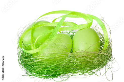Green eggs in the nest