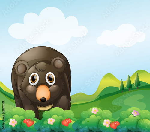 A dark gray bear in the garden