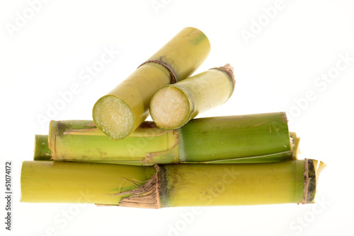 Stumps Of Sugarcane
