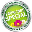"""Button """"Frühlingsspecial"""" grün/silber"""