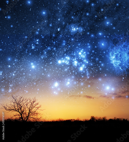 A single tree with beautiful space background