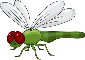 Dragonfly cartoon