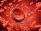 Red blood cells , 3d illustration