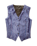 Pinstriped blue vest