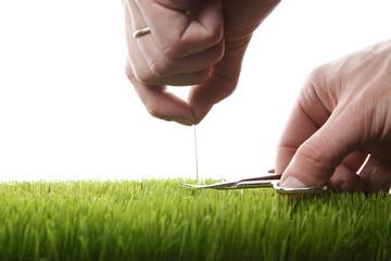 Junger Mann schneidet englischen Rasen
