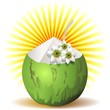 Green Coconut Fresh Drink-Cocco Fresco Bibita-Vector