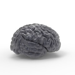 Brain darck