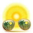 Sunglasses With Palmtree Reflexion-Occhiali da sole e Palme