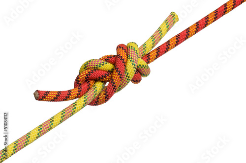 snake knot on a white background