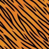 Fototapety Tiger Stripe Pattern